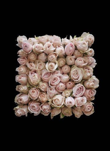 LYA Flower box