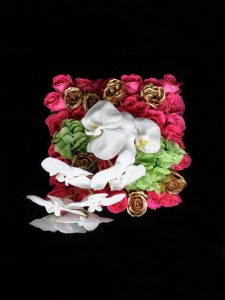 Sutera flower box